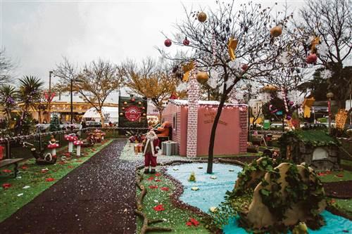 mini jardim jornal hoje : mini jardim jornal hoje:Chega hoje o Mercado de Natal de Benfica, instalado no Jardim do